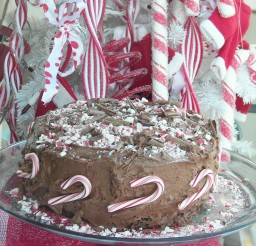 1024x1365px Candy Cane Chocolate Cake Picture in Chocolate Cake