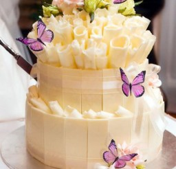 1024x1537px Best Butterfly Wedding Cake Toppers Picture in Wedding Cake