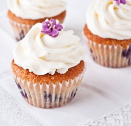1024x1024px Blueberry Cupcakes Chocolate Frosting Picture in Cupcakes