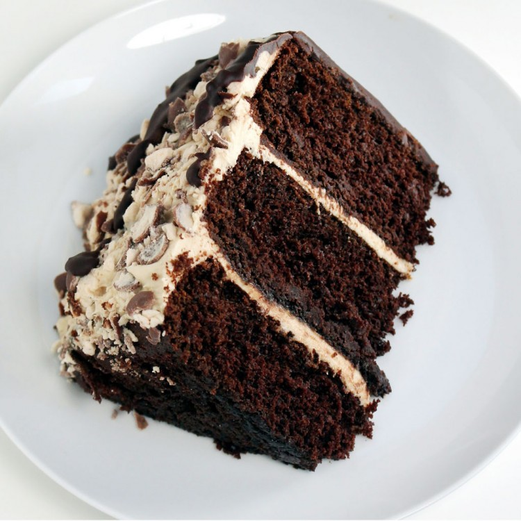 Chocolate Malt Cake Picture in Chocolate Cake