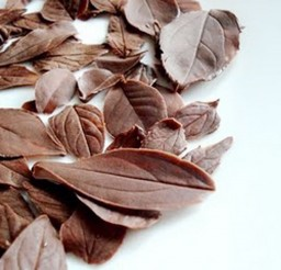 1024x768px Chocolate Leaves Decoration Picture in Chocolate Cake