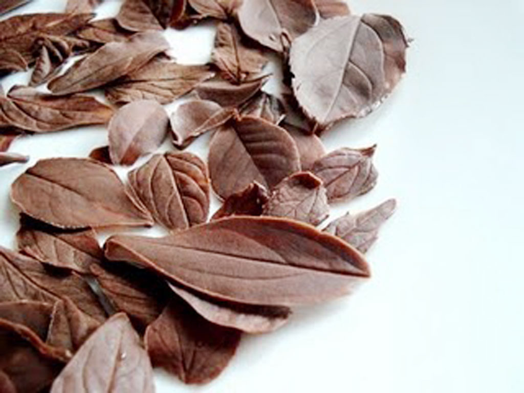 Chocolate Leaves Decoration Chocolate Cake - Cake Ideas by ...