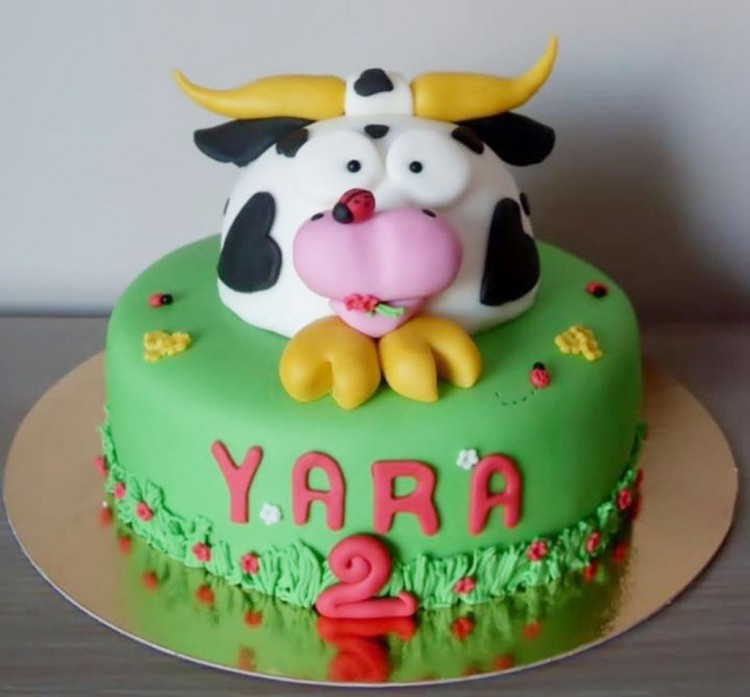 Cow Birthday Cakes Picture in Birthday Cake