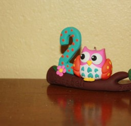 1024x683px Owl Birthday Ornament Picture in Birthday Cake