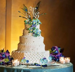 1024x1024px Peacock Feather Wedding Cake Picture in Wedding Cake