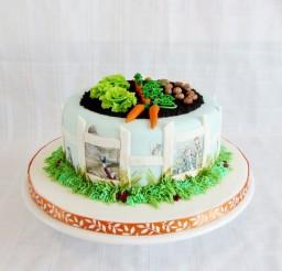 1024x858px Peter Rabbit Birthday Cakes Picture in Birthday Cake
