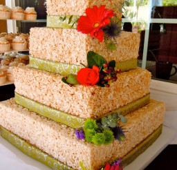 1024x1365px Rice Krispie Wedding Cake Picture in Wedding Cake