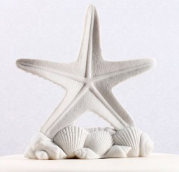 1024x1024px Starfish Shells Beach Wedding Cake Topper Picture in Wedding Cake