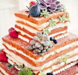 1024x1548px Unique Wedding Cake Ideas Picture in Wedding Cake