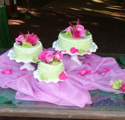 1024x768px Wedding Cake Flowers In Springfield Illinois Picture in Wedding Cake