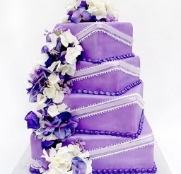 1024x1197px Canton Wedding Cake Design Idea Picture in Wedding Cake
