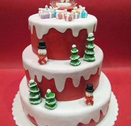 1024x1365px Christmas Birthday Cakes For Children Picture in Birthday Cake