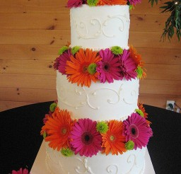 1024x1365px Gerber Daisy Wedding Cake Designs Picture in Wedding Cake