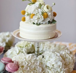 1024x1534px Harris Teeter Wedding Cakes 1 Picture in Wedding Cake