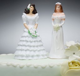 1024x683px Lesbian Wedding Cake Ideas Picture in Wedding Cake