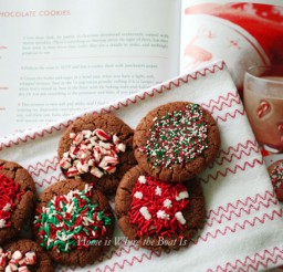 1024x686px Nigella Lawson Christmas Chocolate Cookies Uk Picture in Chocolate Cake