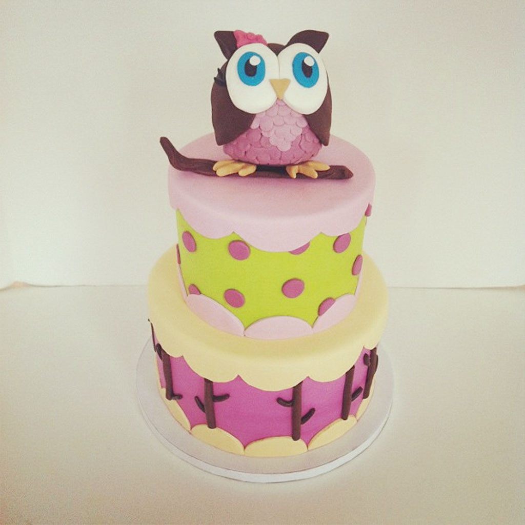Owl Birthday Cakes Decorating Birthday Cake Cake Ideas by Prayfacenet