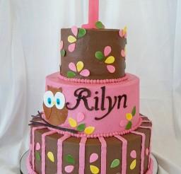 1024x1365px Owl Birthday Cakes Ideas Picture in Birthday Cake