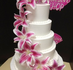 1024x1365px San Antonio Wedding Cakes Views Picture in Wedding Cake