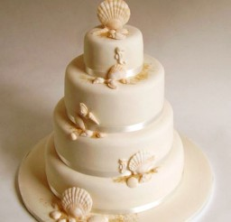 1024x1267px Seashell Wedding Cake Picture in Wedding Cake