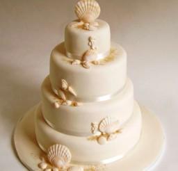 1024x1267px Seashell Wedding Cake Picture in Wedding Cake