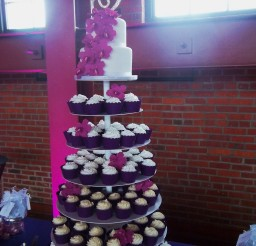 1024x1365px Springfield Wedding Reception Illinois Cupcake Cake Pink Purple Fuchsia Harp Player Picture in Wedding Cake
