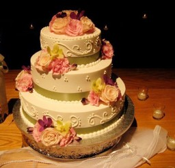 1024x768px Tiramisu Wedding Cake Decoration 3 Picture in Wedding Cake