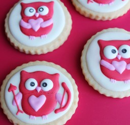 1024x1183px Valentines Day Owl Cookies Picture in Valentine Cakes