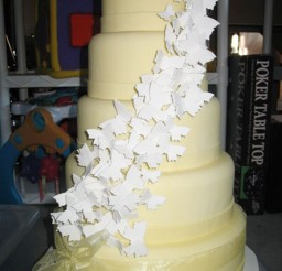 1024x1365px Wedding Cakes Colorado Springs Picture in Wedding Cake