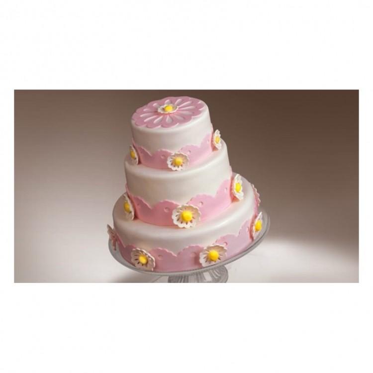 Cake Cricut Mini Picture in Cake Decor