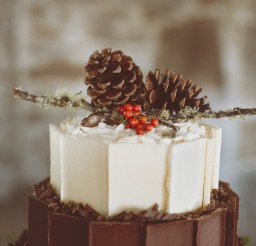 599x900px Chocolate Pine Cones Picture in Chocolate Cake