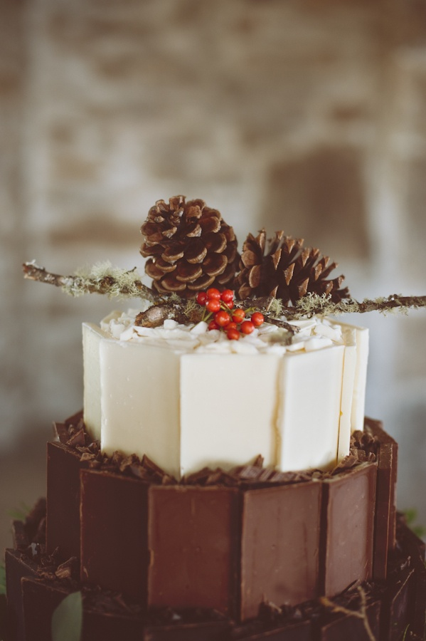 Chocolate Pine Cones Picture in Chocolate Cake