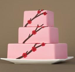 1600x1600px Cricut Mini Cake Picture in Cake Decor