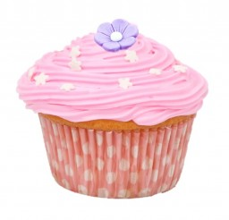 500x512px Cupcake Cases Picture in Cupcakes