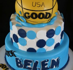368x512px Water Polo Cake Picture in Cake Decor