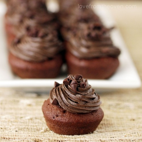 Babycakes Cupcake Maker Recipes Picture in Chocolate Cake