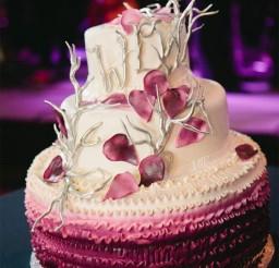 600x800px Unique Cake Picture in Cake Decor